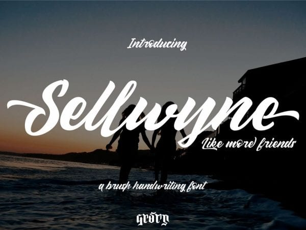 Sellwyne Beautiful Script Fonts 1