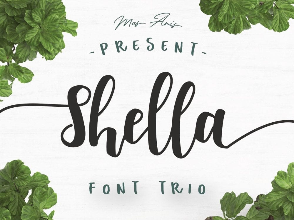 shella free hand brush font