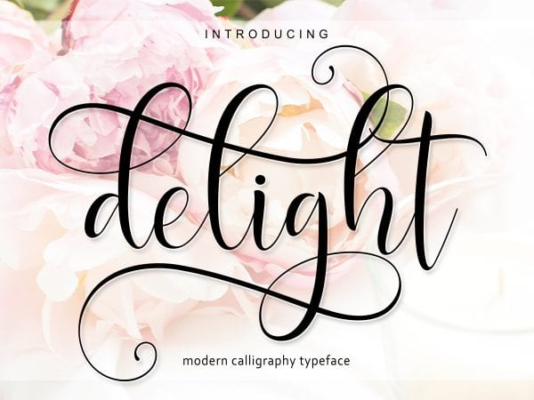 Delight Modern Calligraphy Typeface