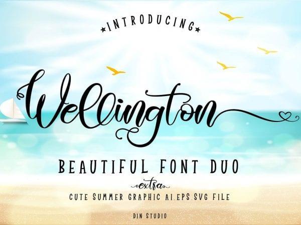 Wellington Modern Calligraphy Font