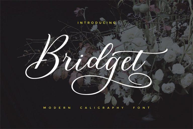 Bridget Handwritten Calligraphy Font