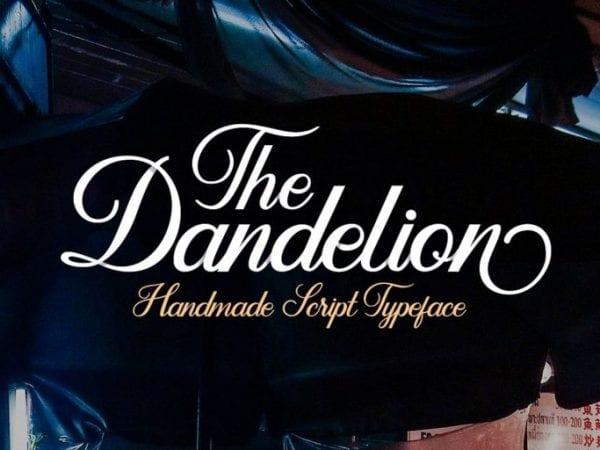 Dandelion Hand lettering Script Fonts