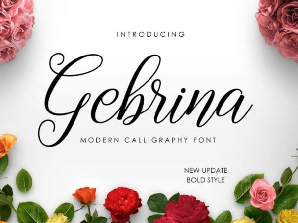 Gebrina Calligraphy Script Font