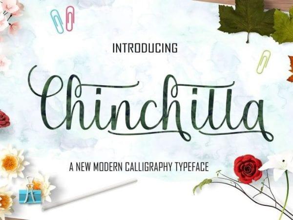 Chinchilla Modern Calligraphy Script Font