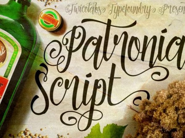 Patronia Handwritten Script Font