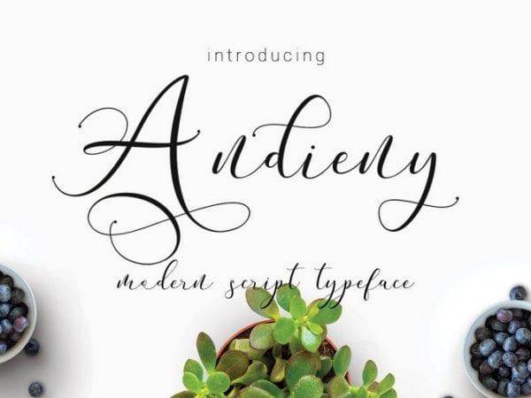 Andieny Modern Handwritten Script Font