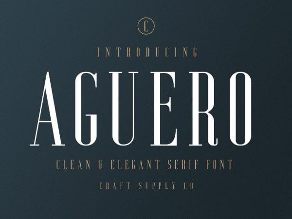 Aguero Free Serif Display Fonts
