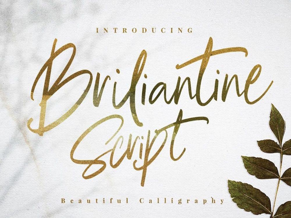 Briliantine Calligraphy Script Font