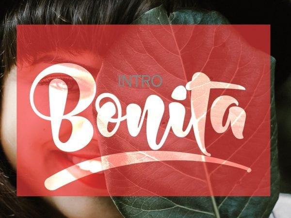 Bonita Bold Unique Brush Script Font