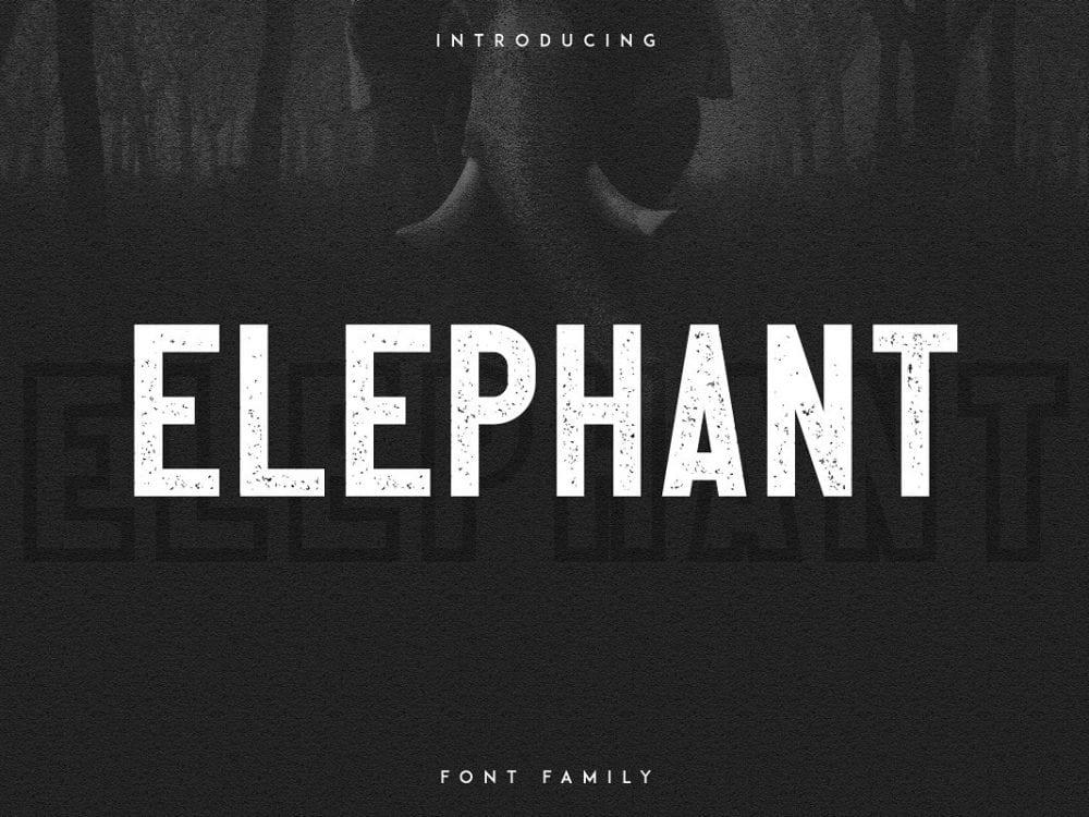 Elephant Display Sans Serif Font