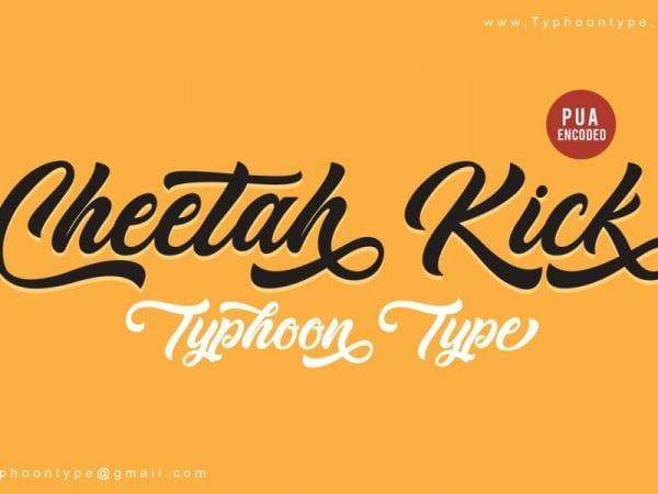 Cheetah Kick Calligraphy Script Font