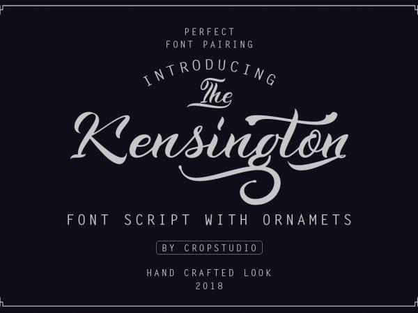 Kensington Calligraphy Script Font