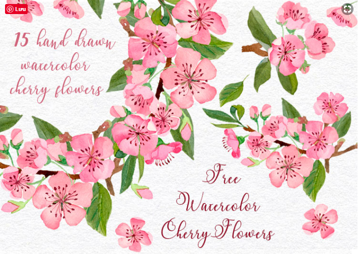 15 Hand-drawn Cherry Watercolor Flowers