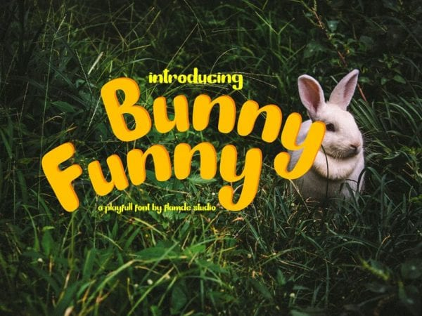 Bunny Funny Playful Brush Scrip Typeface