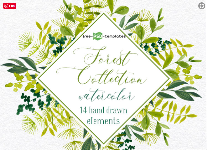 Collection Of 14 Hand-drawn Watercolor Forest Elements