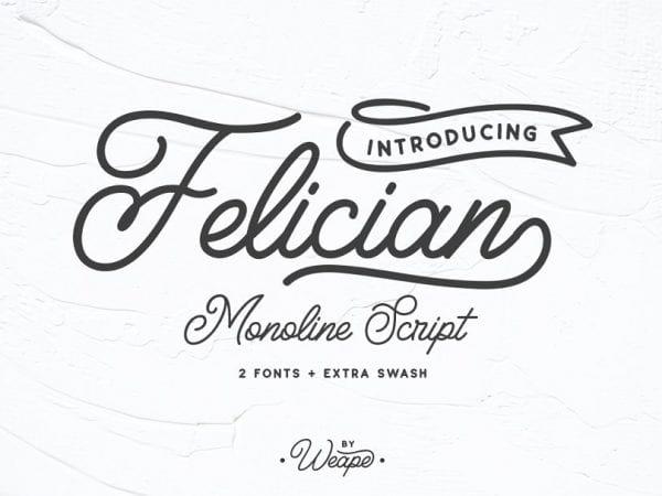 Felician Handwritten Calligraphy Script Font
