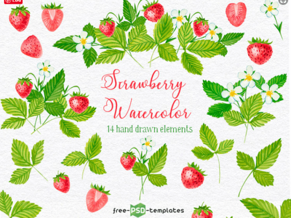 Set Of 14 Hand-drawn Strawberry Watercolor